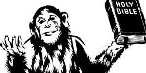 monkeybible
